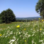 Tanzen-Urlaub-Thüringer Wald-Simmersbergblick