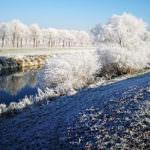 Winter in Nebra